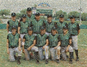 Washington Stars mosaic by Suzann Lankford